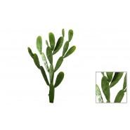 Cactus Chumbera latex