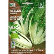 Acelga Verde Penca Ancha 5gr (Ecológica)
