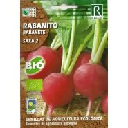 """Rabanito """"Saxa 2"""""""